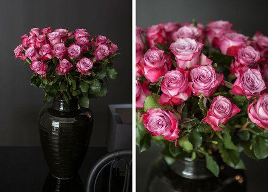 Slik snitter du roser | Stelletips fra Mester Grønn