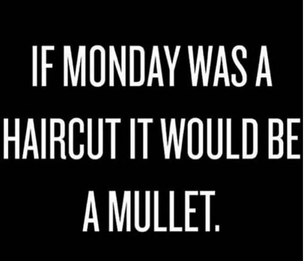 Monday Meme | Funny monday memes, Monday humor, Hair quotes