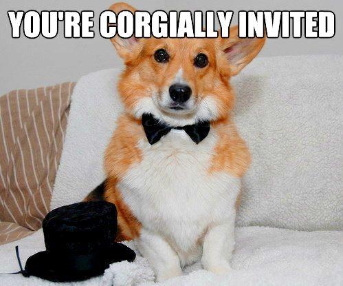 You're corgially invited.