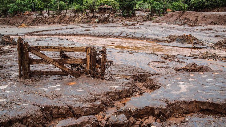 Propriedade destruída no arraial Camargos, em Mariana-MG. Foto: Joka Madruga