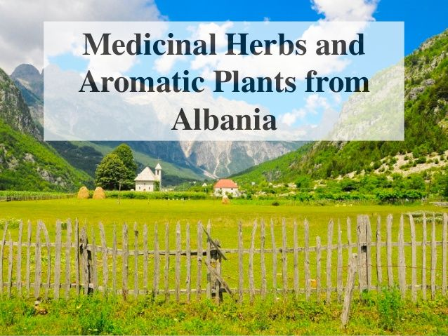 Medicinal Herbs and  Aromatic Plants from  Albania