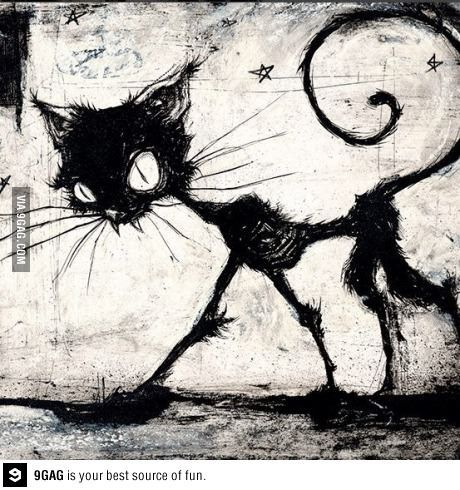 Tim Burton cat                                                                                                                                                                                 More