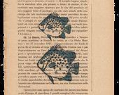 Pag.33, Acquario di pesci azzurri .Posizione pagina: verticale.