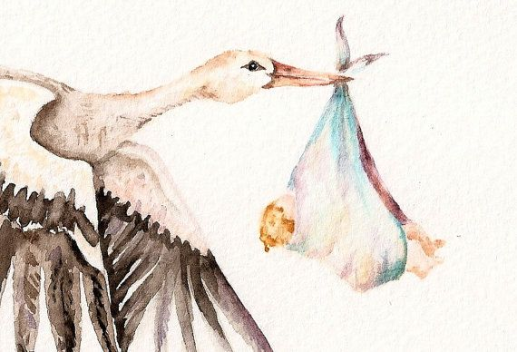 Baby On Bird Original Watercolor Of White Stork Carrying