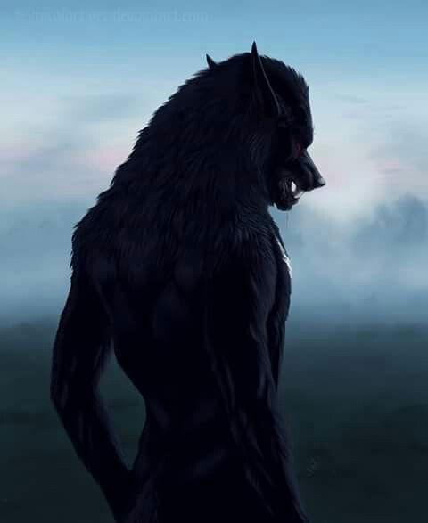 Mercer's Werewolf form.