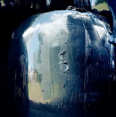Foto van Natascha Libbert (1973) Bij de gratie van het licht, toont zich in de reflectie van een hooibaal het Nederlandse landschap.