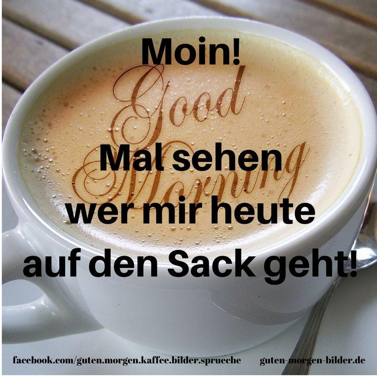 Good Morning Sprüche Auf Englisch : Die besten bilder zu guten morgen good morning