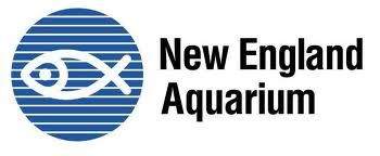aquarium logo - Google Search | Logos Acuario | Pinterest | Logos ...