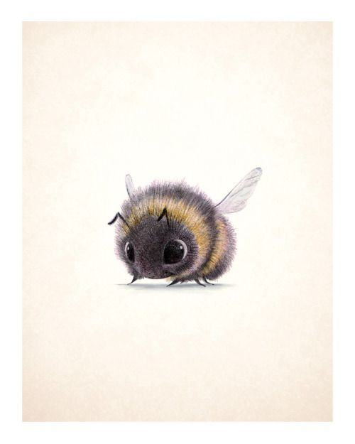 Syd's illustration, 'Bumblebee!'