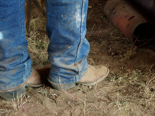17 Best images about Cowboy Boots, Western Boots, From EAGLE AGES ...