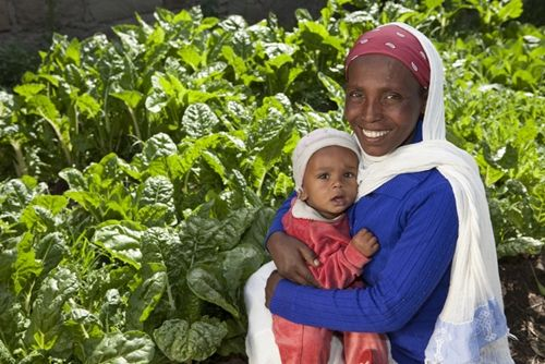 Urban farming is becoming increasingly popular in many developing nations.