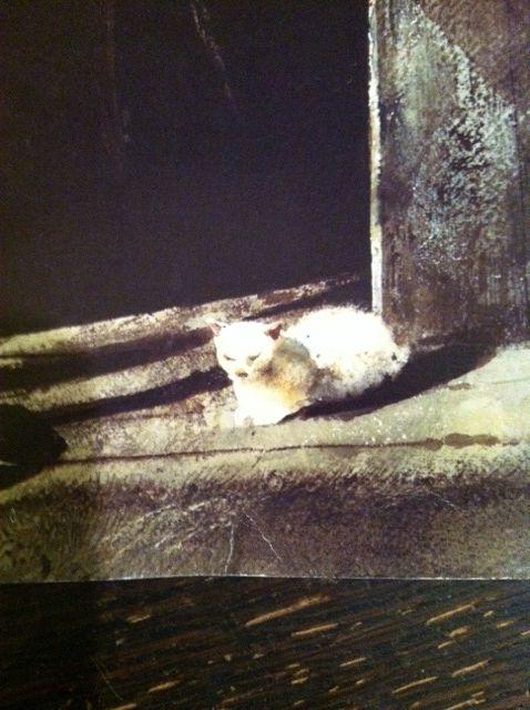 Andrew Wyeth Cat Nap Art And Illustration Pinterest