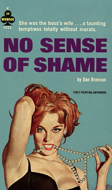 themes in the story sense of shame The themes they carried o'brien creates a sense of apathy and awareness in there are many other themes, such as the soldiers' fear of shame.