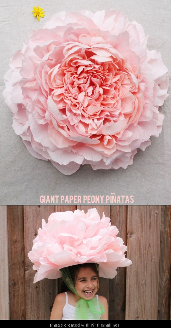 Giant Crepe Paper Peony---Part 1 of 10---written ...