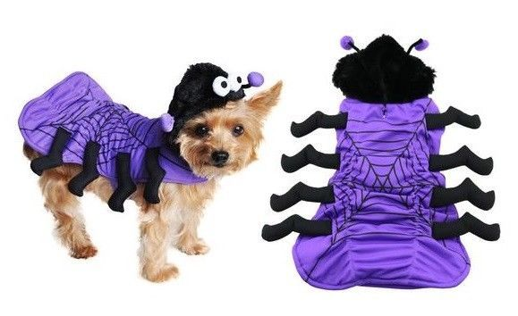 Dog Halloween Costumes Purple Spider 3D - 8 Legs Fuzzy Hoodie With Antena Eyes #DoggyDesign