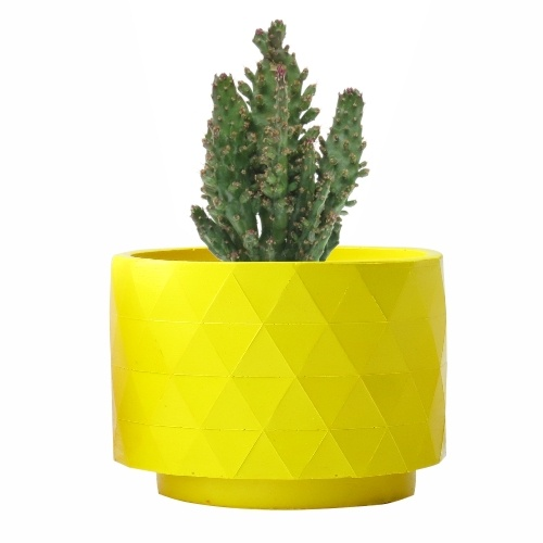 Opuntia Monacantha, con maceta Polygon amarilla mate, diseñada por RiiVDesign, disponible en MyCoolCactus.com; precio orientativo 19€, $23.43