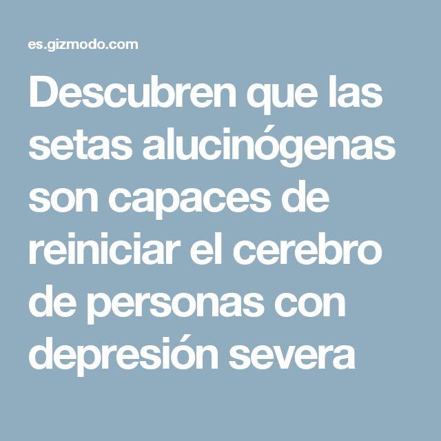 Descubren que las setas alucinógenas son capaces de reiniciar el cerebro de personas con depresión severa