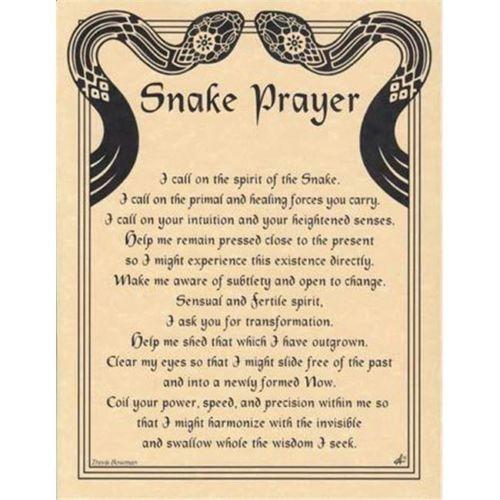 The snake goddess essay