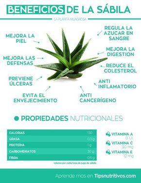 Infografia de la sabila