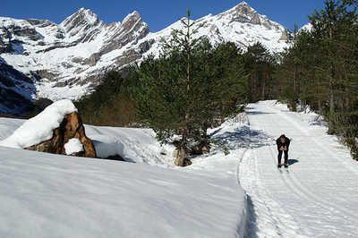 Esqui de fondo en Pineta.--- Ski de fond á Pineta.