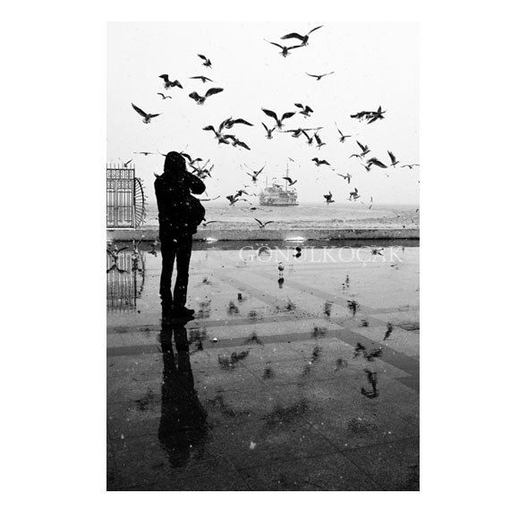 Wall decor   Black and white    istanbul Photography  by gonulk, $50.00