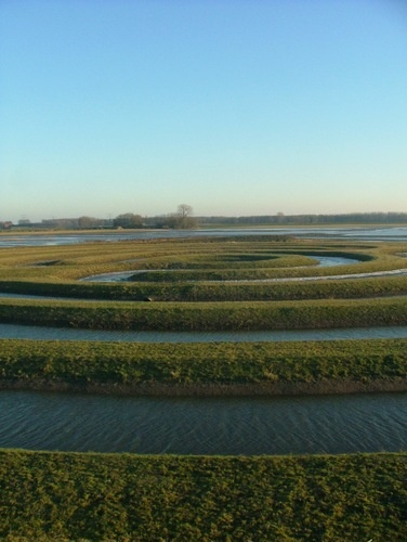labyrinth in water, Biesbosch, photo by Proost