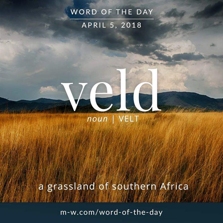 Today's #wordoftheday is 'veld' . #language #merriamwebster #dictionary