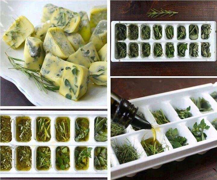 FREEZE FRESH HERBS IN OLIVE OIL - chop finely first. Can also do this with butter in really small cubes, ideal for spreading over wood oven bread!