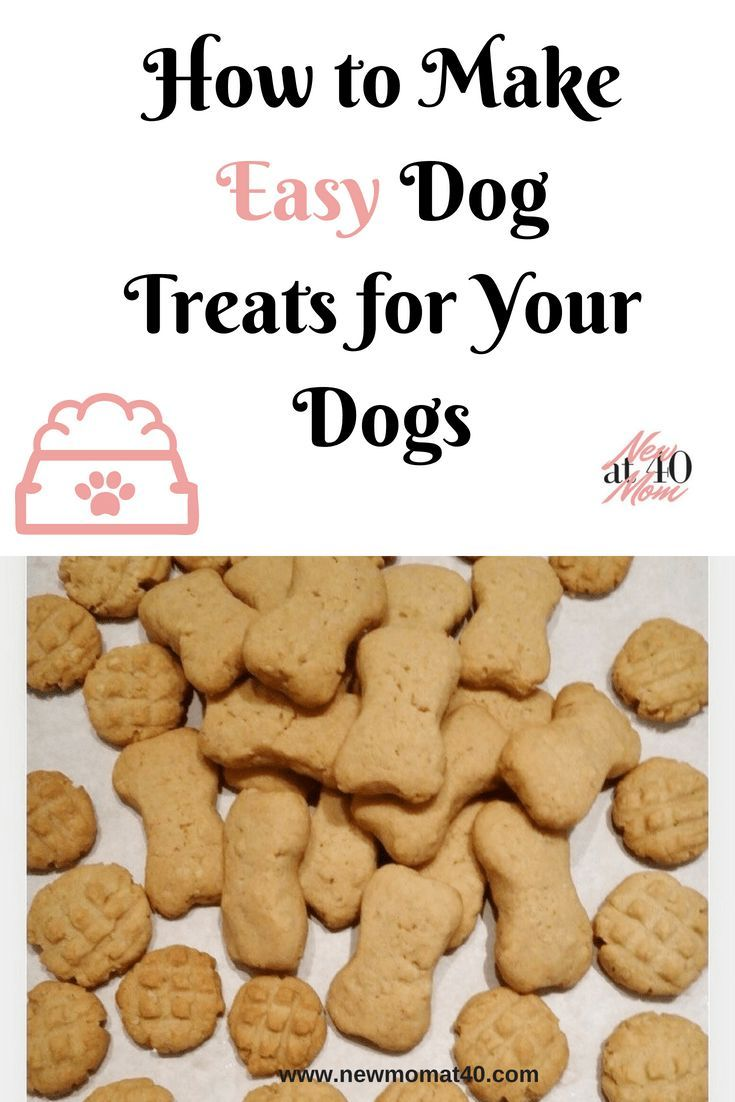 Easy Dog Treats Recipe Dog Biscuit Recipes Dog Treat Recipes