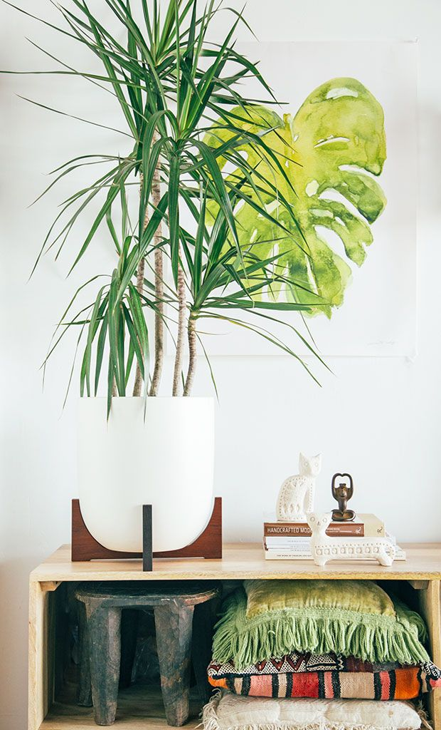 We are giving away this planter today on the blog!