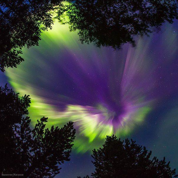 Полярное сияние, Мурманская область. 30 августа 2014 года. Автор фото: Валентин Жиганов. Доброй ночи!