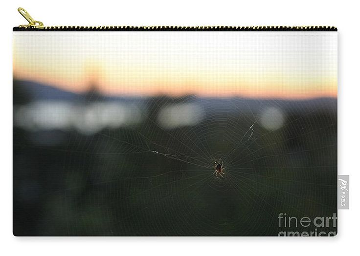 Araneus Diadematus Carry-all Pouch featuring the photograph Sunset Spider by…