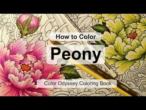 How to Color Peony | Adult coloring book: Color Odyssey by Chris Garver - YouTube