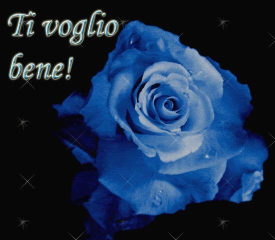 rosa blu
