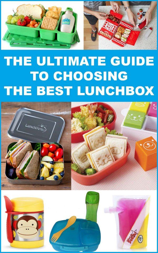 A guide to to choosing the best lunchbox for kids.  |  The Organised Housewife