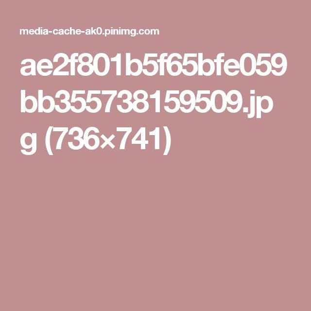 ae2f801b5f65bfe059bb355738159509.jpg (736×741)