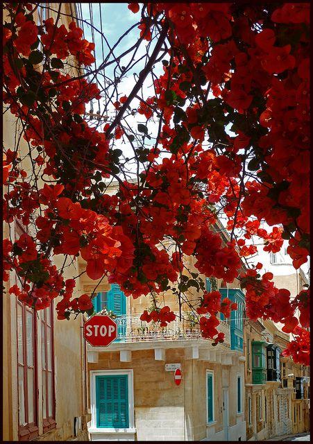 A street in Sliema, Malta