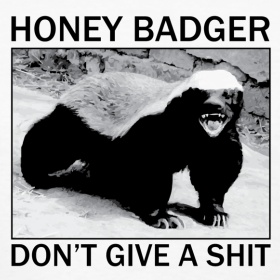 honey badger... love Randal!