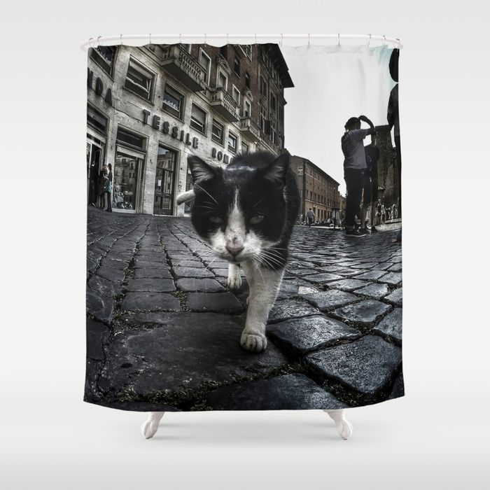Close up portrait of a tough street cat in the city of Rome.  #cat #streetcat #animal #streetphotography #photography #gopro #wideangle #street #city #cityphotography #rome #italy #shower #curtains