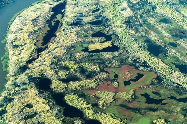 Así lo decidió la Convención Internacional Ramsar que considera a la zona como un reservorio de biodiversidad al tiempo que cumple con un rol de regulación hidrológica