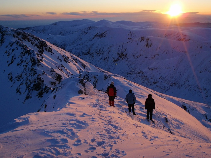 Did you take new year pledges for 2013? We have an idea for the first one: commit yourself to Wilderness!