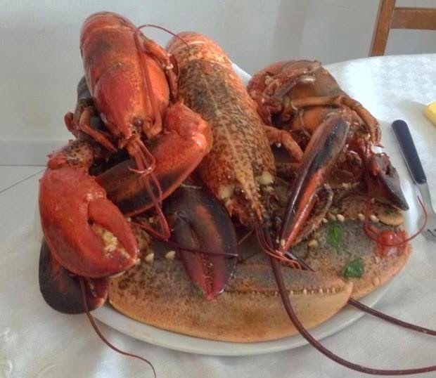 Chaos: Piatti del mare: astice, aragosta e schizzi sulla ...