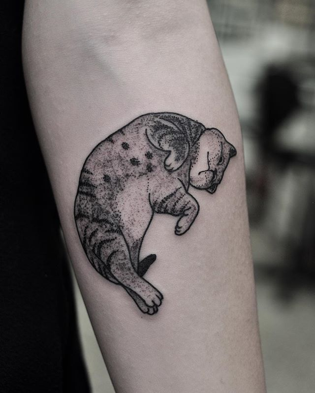 Little cat for Tania