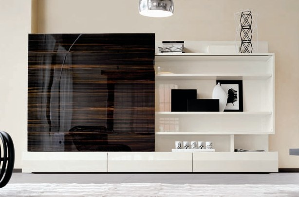 entertainment units with gorgeous zebra wood