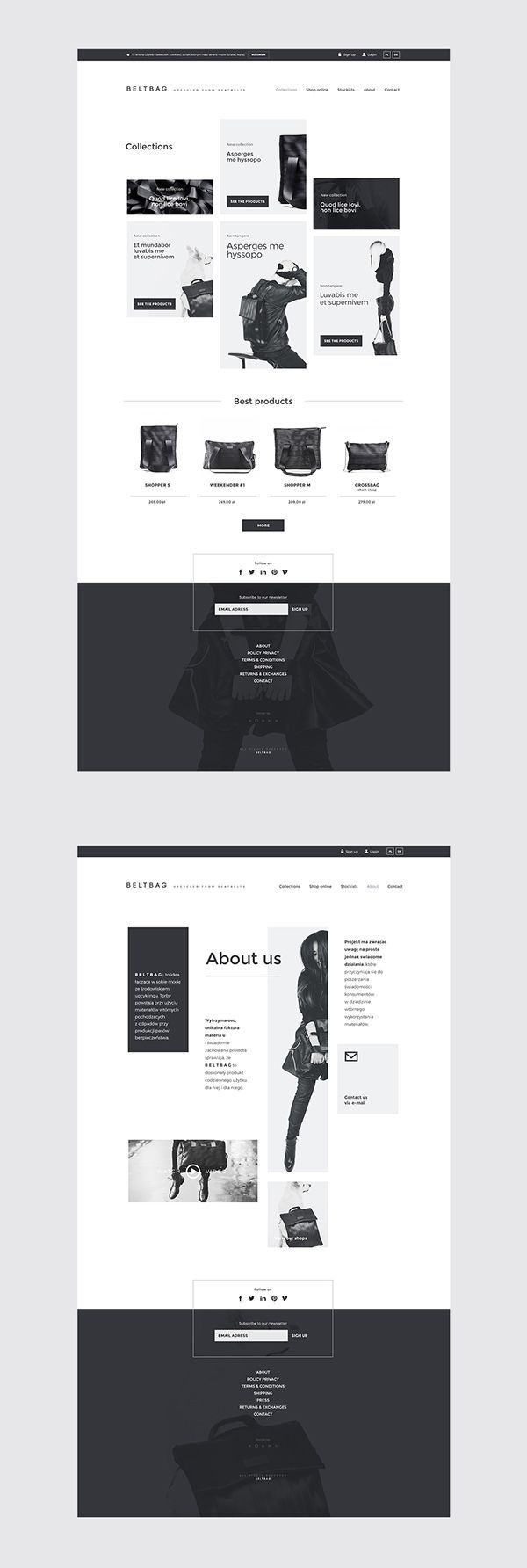 Beltbag Website on Web Design Served
