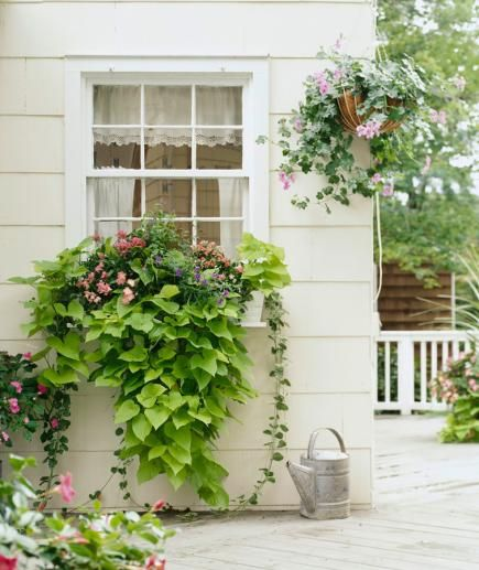 Trimmed and tidy is overrated. Let your plants grow like wild for a beautiful arrangement that falls naturally. Details: http://www.midwestliving.com/garden/container/30-bright-and-beautiful-window-box-planters/?page=12