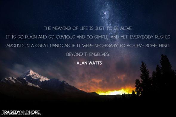 Der Sinn des Lebens – Alan Watts – Philosophy
