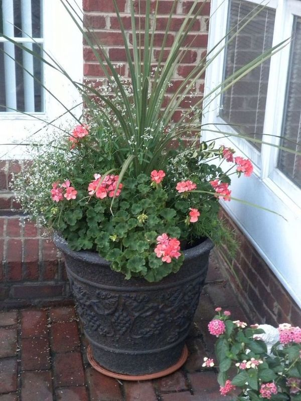 Flower Pot Arrangement Ideas | Garden Guides