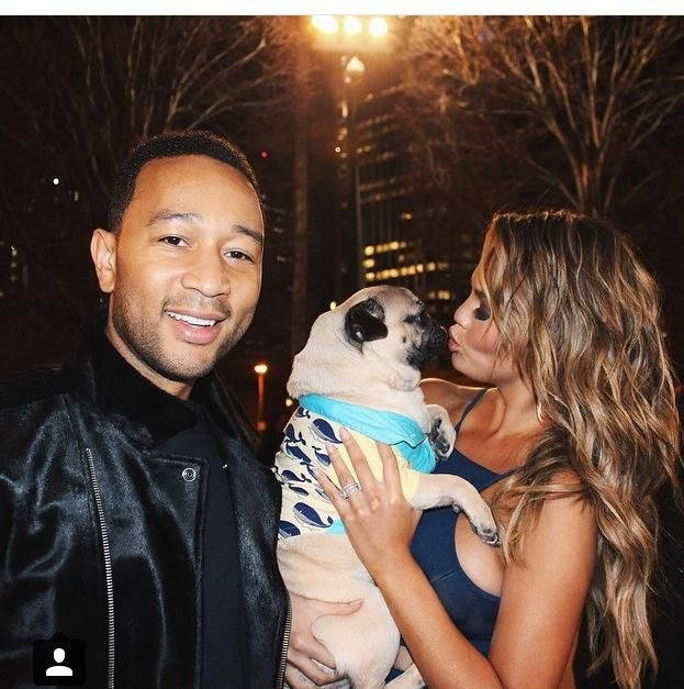 Jon Legend & Chrissie Teigen & doug the pug ----- P.S. click on the image to check out our Funny Pugs T-shirt today! All sizes available in different colors.