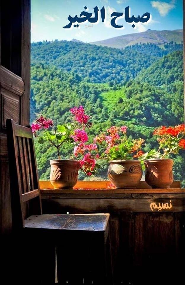 اللهم صبحنا ببشائر خيـرك وأمددنا بوافر جـودك وأجعل لنا مع نسمات هذا الصباح رزقا وسعـادة وعافــية Window View Beautiful Places Looking Out The Window